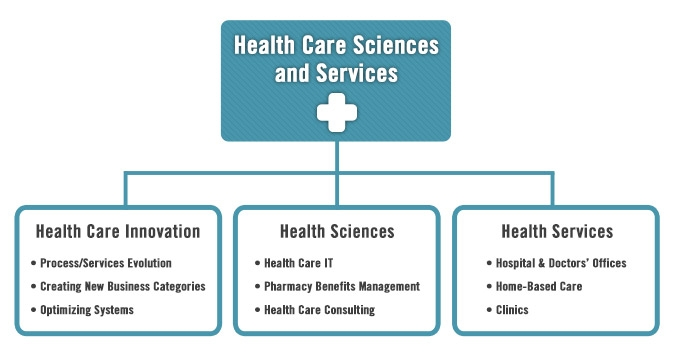 Healthcare Sciences and Services Chart